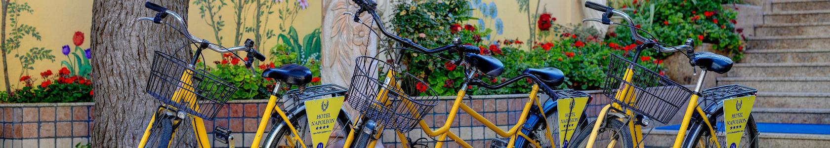 Noleggio bici gratuito Hotel Napoleon